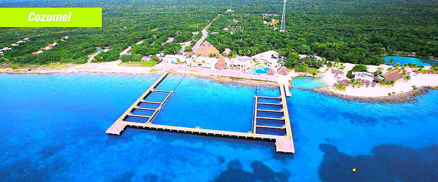 Welcome to Dolphin Discovery Cozumel at Chankanaab Beach Adventure Park!