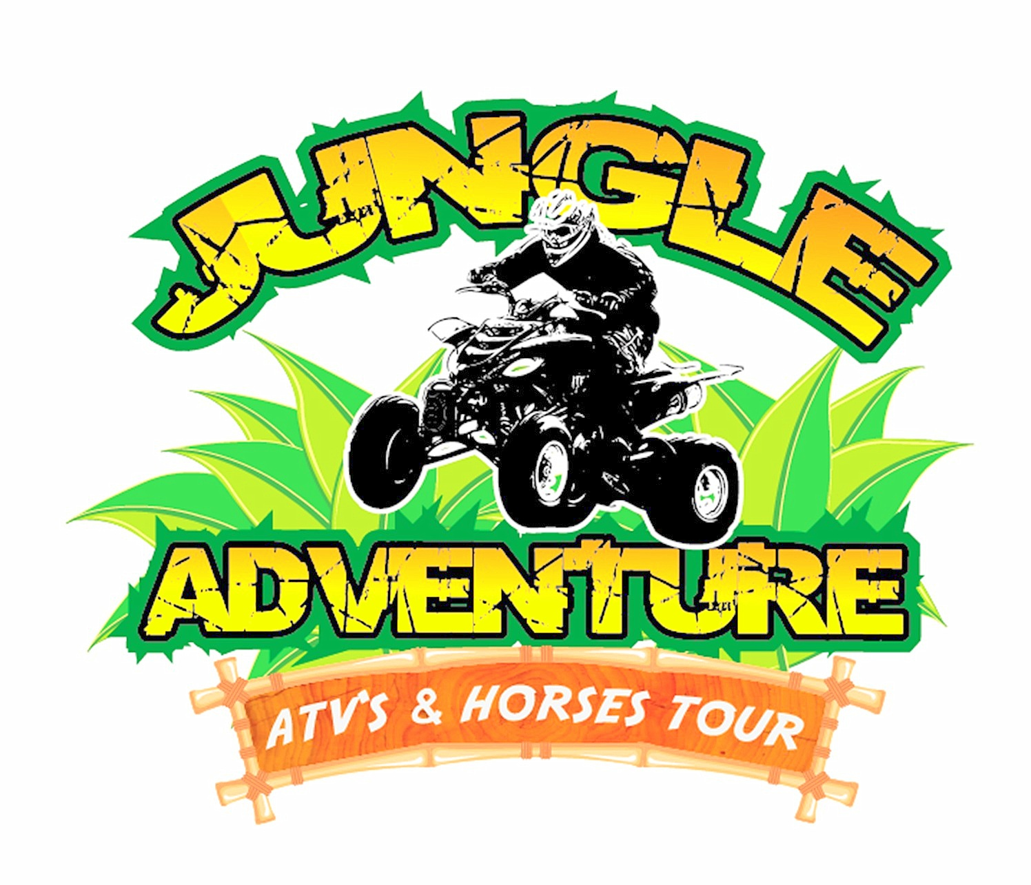 Welcome to Jungle Adventure Cozumel Tours!