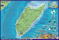 Cozumel Map - Side 1