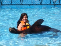 Dolphin Discovery Sea Lions Reserve online here!