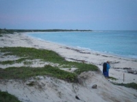 Miles of pristine beach at Punta Sur Park Cozumel