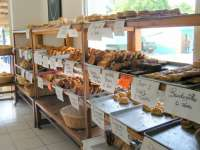 Wonderful variety of fresh pastires daily!
