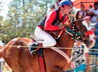 Horseracing at Cozumel Festival de Cedral!