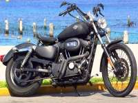 Nothing Says ISLAND PARADISE Like a Harley!