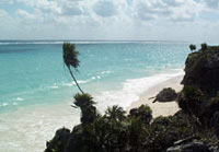 The beach off Tulum